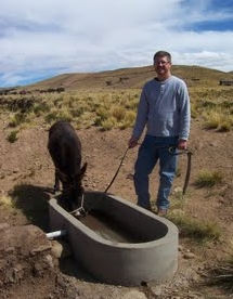 Robert, and a trough